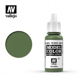 Vallejo Model Color_ Camuflaje Alemán Verde Claro 080