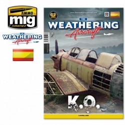 THE WEATHERING AIRCRAFT. INVERNALES