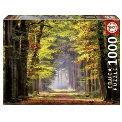 Educa 19021_ Paseo Otoñal. Puzzle 1000 piezas.