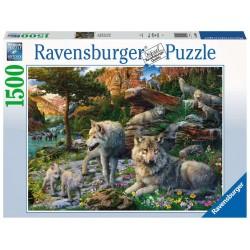 Ravensburger 16598_ Lobos en Primavera_ Puzzle 1500 Pzas