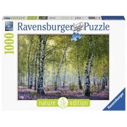 Ravensburger 16753_ Nature Edition_ Vallée De La Clarée_ Puzzle 1000pcs