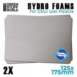 Hidro Esponja para Paleta Húmeda (x2uds.) producto