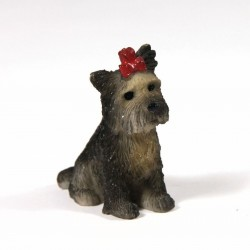 STREETS AHEAD_DH_ BOO THE YORKSHIRE TERRIER DOG_ 1/12